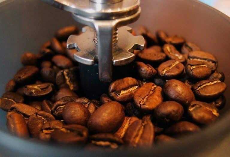 Krups GX5000 Coffee Grinder